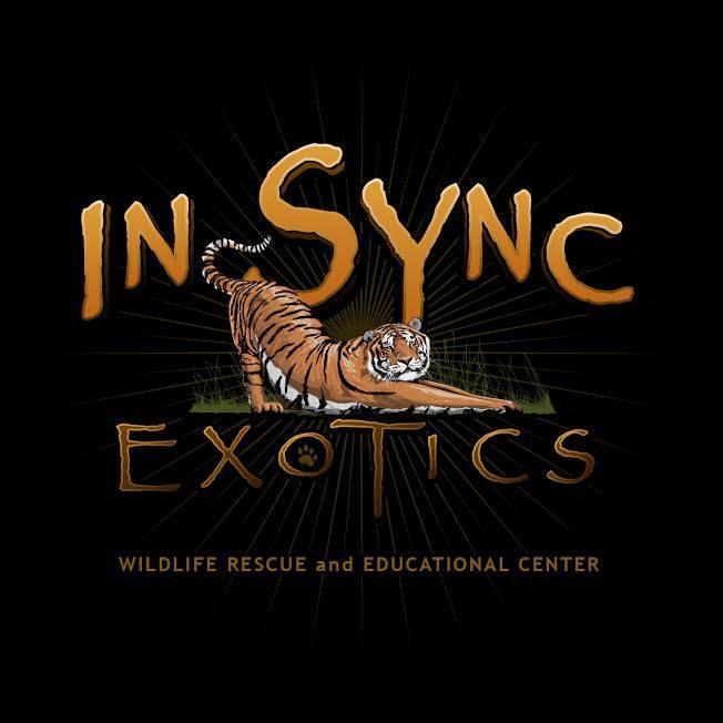 In Sync Exotics